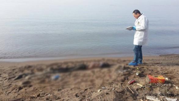 Arsuz'da Erkek Cesedi Kıyıya Vurdu.