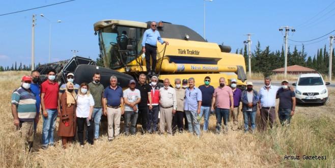 Arsuz'da  sezonun ilk buğday hasadı yapıldı